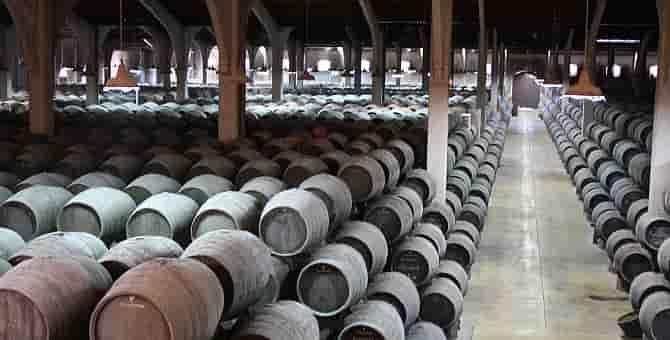 Как делают вино Херес: От лозы до бочки. Солерно-криадерная система